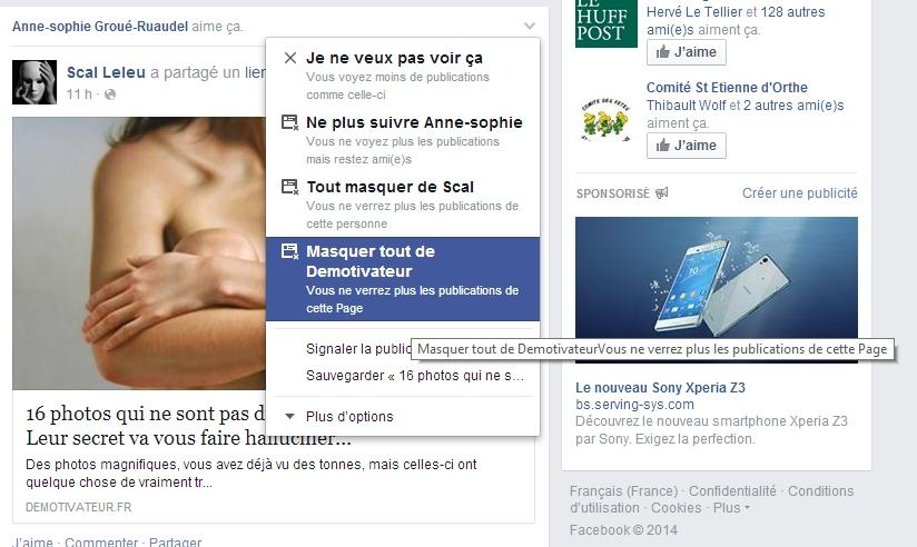 Facebook Masquer