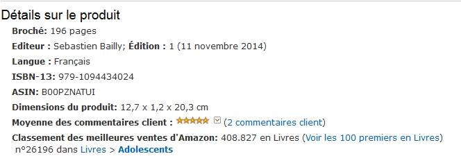Comment Placer Son Roman Dans Le Top 100 D Amazon