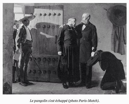 Légendes photos : la leçon de Pierre Desproges